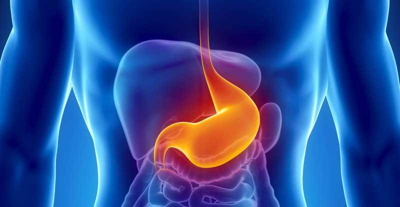 Gastroenterologia Lecco